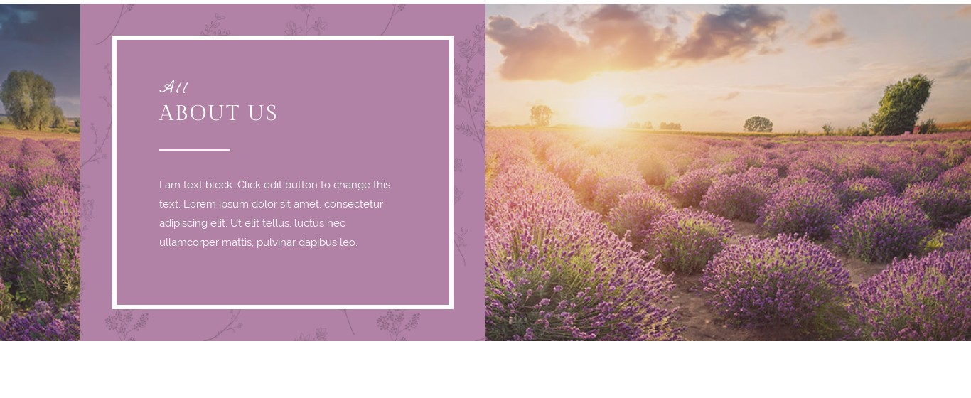 Block- Text Box and Background Photo Full Width