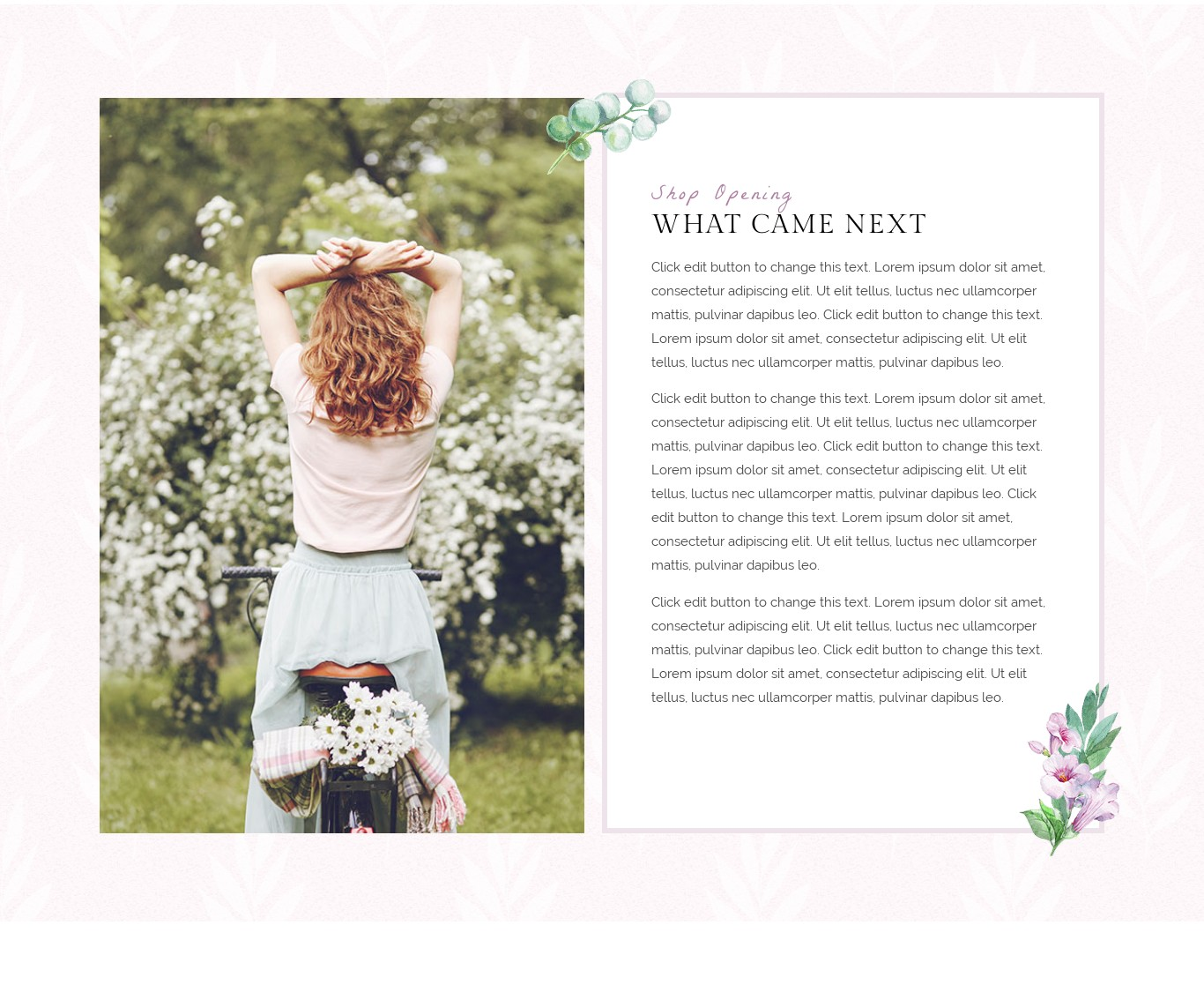 Block- 2 Column Text box with border and full width background